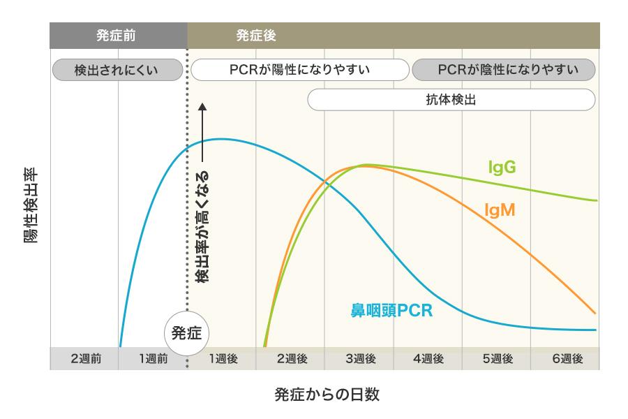 抗体 東京 コロナ 検査